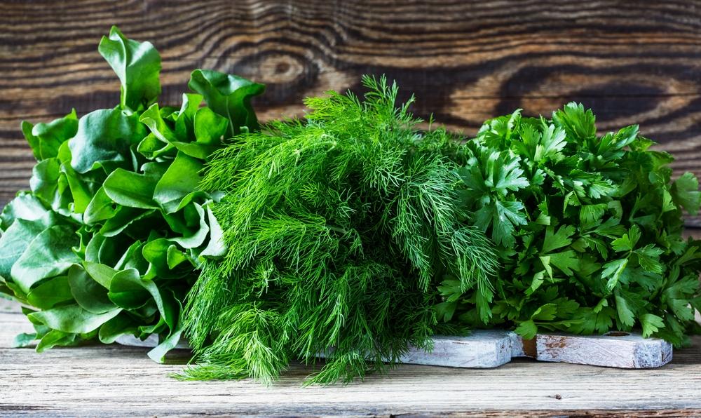 Перше зіллячко: 7 зелених вітамінів, які необхідно вживати навесні