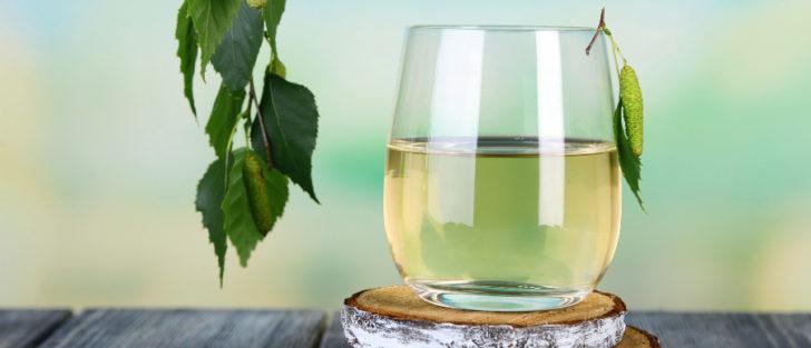 13 причин пити березовий сік | Як приготувати березовий сік в дома?