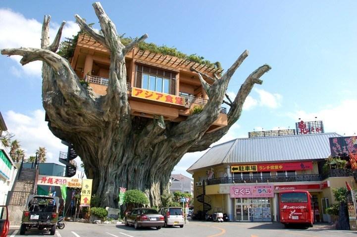 Gajumaru – ресторан, або кафе на дереві