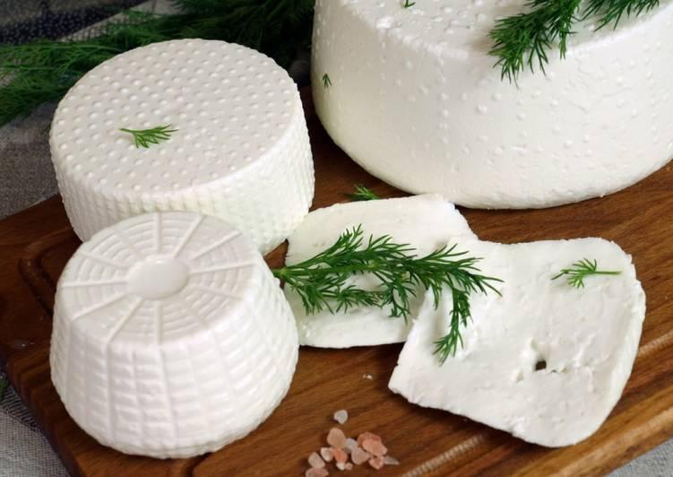 Рецепт кисломолочного сиру з козячого молока (бринза)