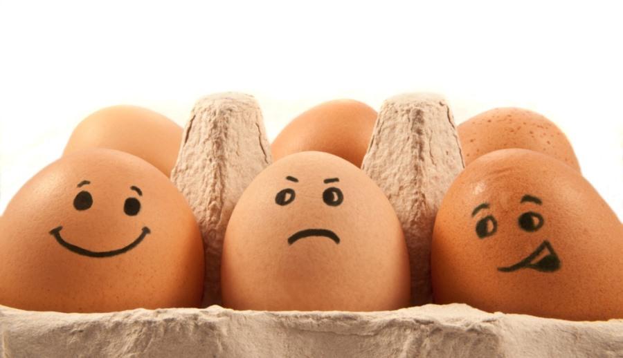 які яйця купувати - білі чи коричневі3