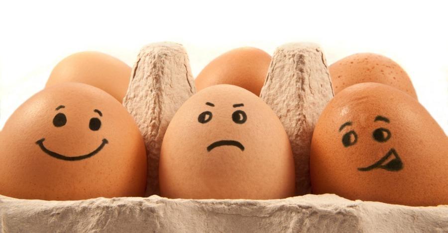 курятина, яйця
