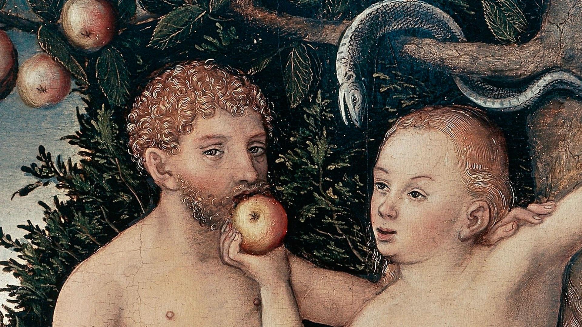 яблуко адам